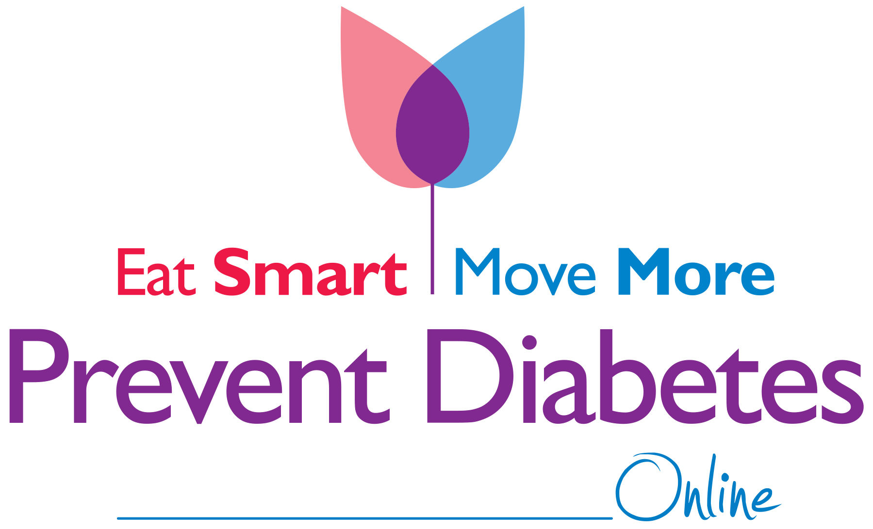 diabetes prevention program