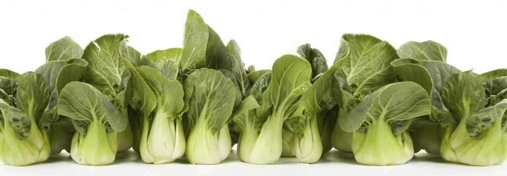 Vegetable of the Week: Baby Bok Choy