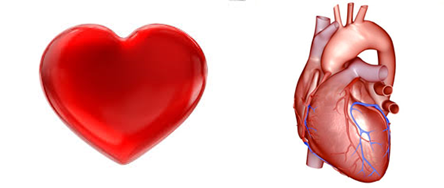 Caring for the Heart(s): Find Your Caring Fitness Community