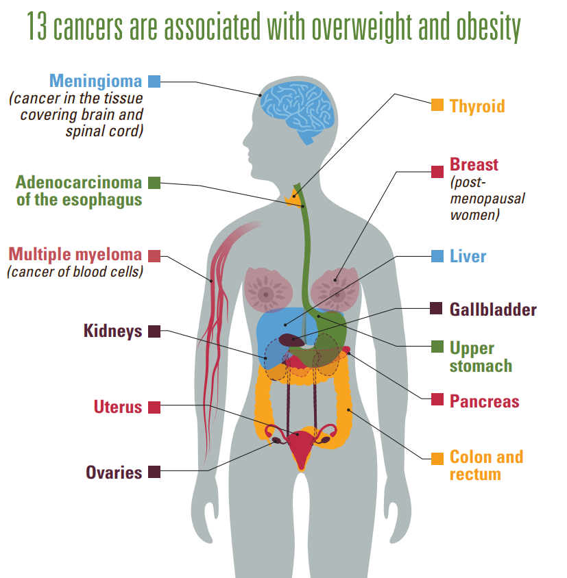 Weigh Your Cancer Risk