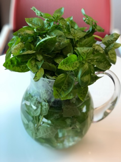 5 ways to use fresh basil