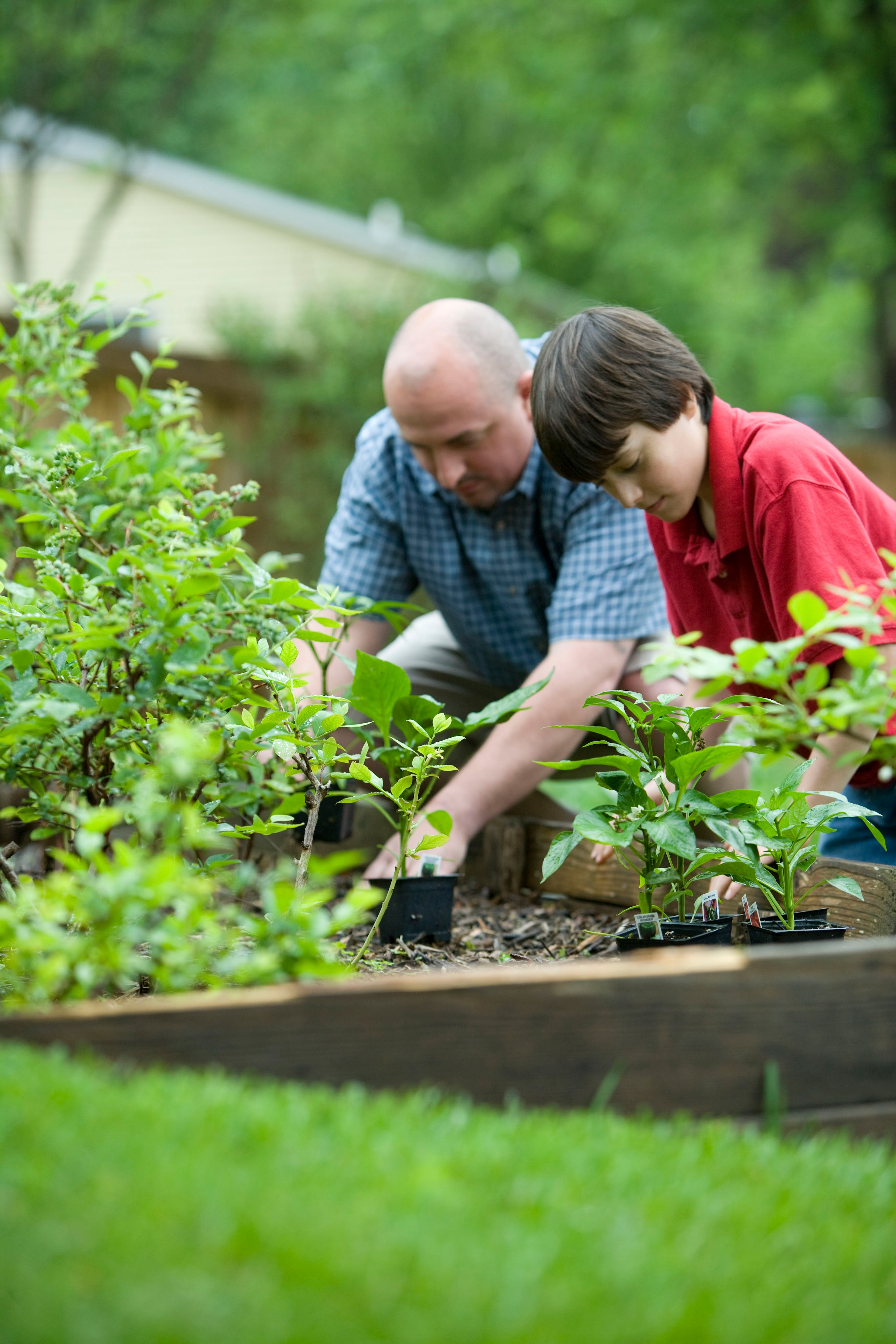 Gardening for Physical Activity